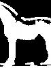 Anchorage Barn Equine Clinic logo